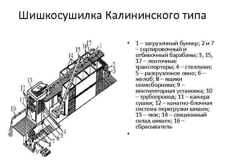 Шишкосушилка Калининского типа • 1 – загрузочный бункер; 2 и 7 – сортировочный и
