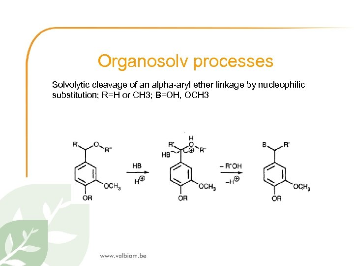 Organosolv processes Solvolytic cleavage of an alpha-aryl ether linkage by nucleophilic substitution; R=H or