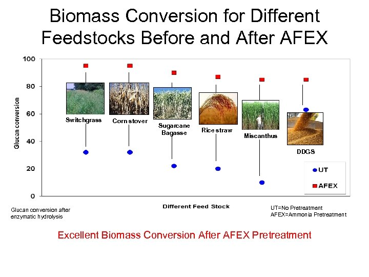 Biomass Conversion for Different Feedstocks Before and After AFEX Glucan conversion for various AFEX