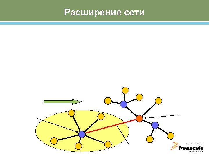 Расширение сети