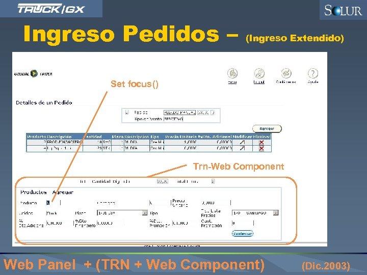 Ingreso Pedidos – (Ingreso Extendido) Set focus() Trn-Web Component Web Panel + (TRN +