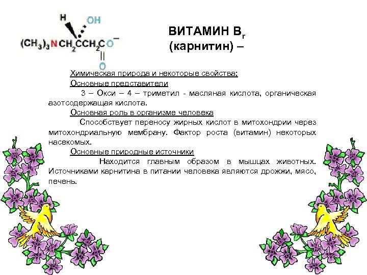 ВИТАМИН Вr (карнитин) – Химическая природа и некоторые свойства; Основные представители 3 – Окси