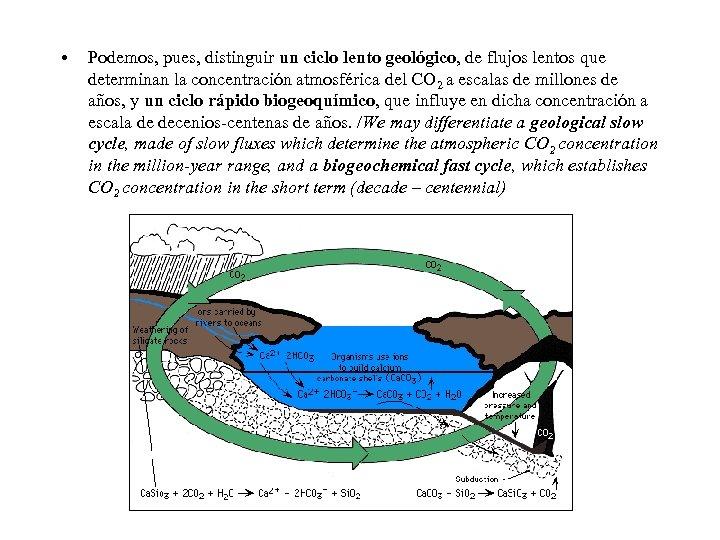 • Podemos, pues, distinguir un ciclo lento geológico, de flujos lentos que determinan