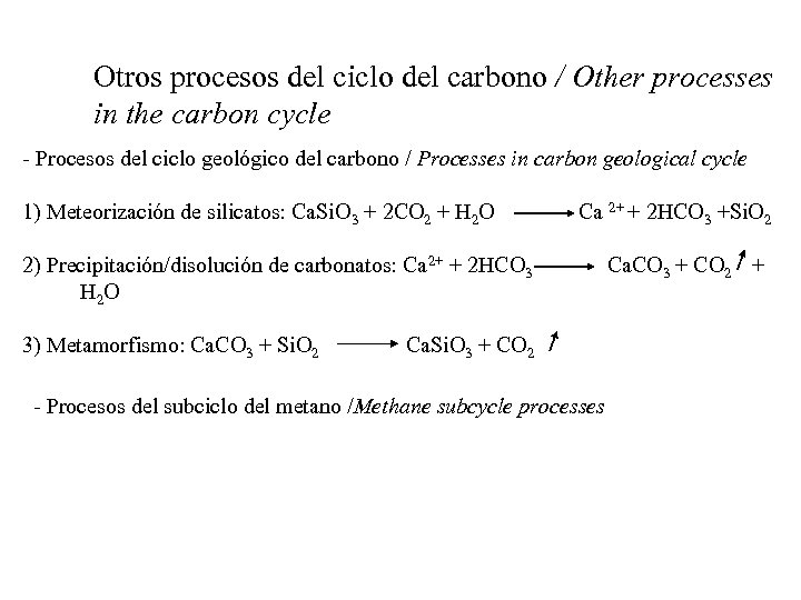 Otros procesos del ciclo del carbono / Other processes in the carbon cycle -