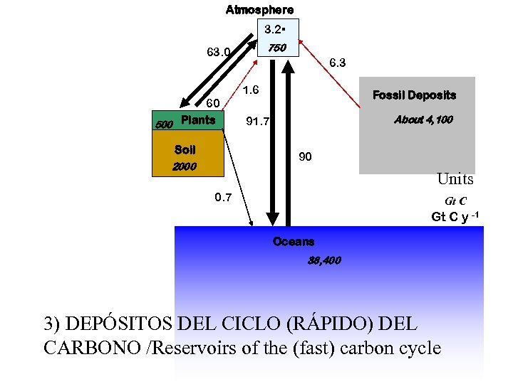 Atmosphere 3. 2 750 63. 0 6. 3 1. 6 60 500 Plants Soil