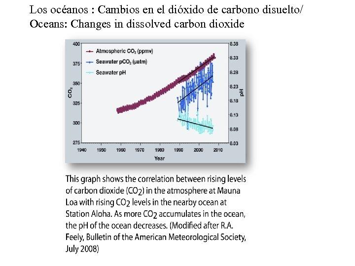 Los océanos : Cambios en el dióxido de carbono disuelto/ Oceans: Changes in dissolved