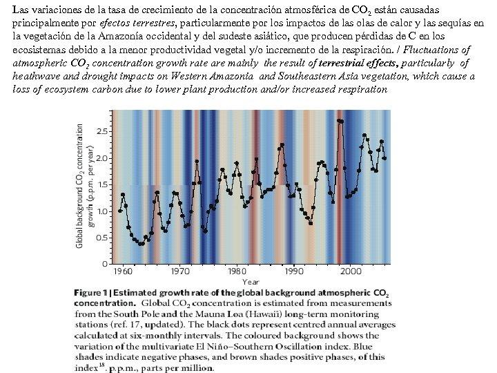 Las variaciones de la tasa de crecimiento de la concentración atmosférica de CO 2