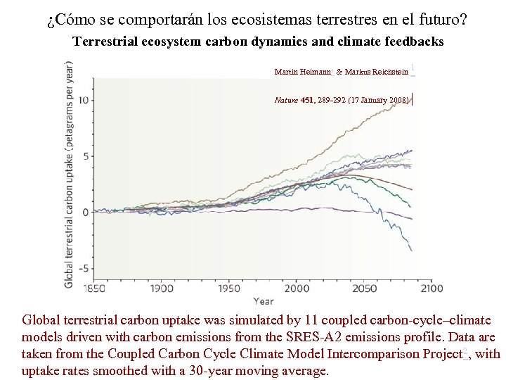 ¿Cómo se comportarán los ecosistemas terrestres en el futuro? Terrestrial ecosystem carbon dynamics and