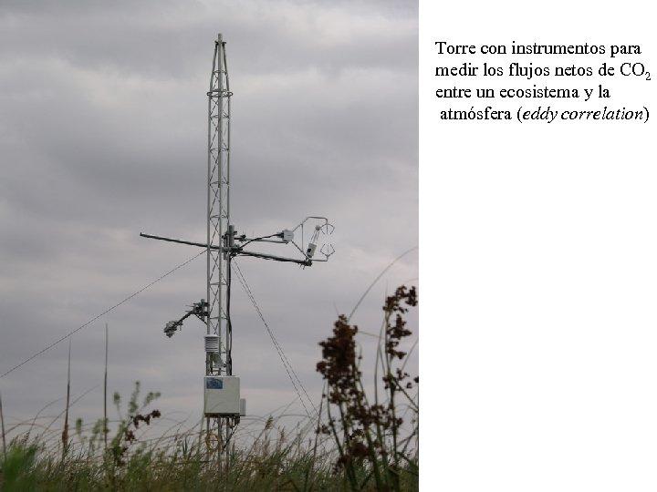 Torre con instrumentos para medir los flujos netos de CO 2 entre un ecosistema