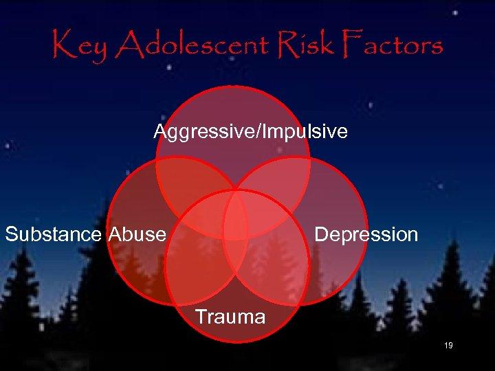 Key Adolescent Risk Factors Aggressive/Impulsive Substance Abuse Depression Trauma 19