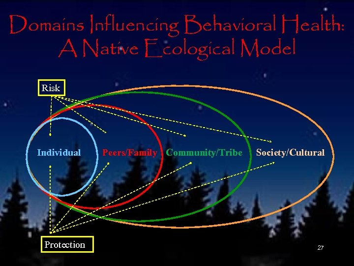Domains Influencing Behavioral Health: A Native Ecological Model Risk Individual Protection Peers/Family Community/Tribe Society/Cultural