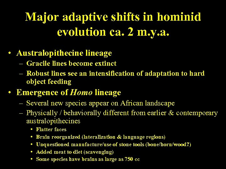 Major adaptive shifts in hominid evolution ca. 2 m. y. a. • Australopithecine lineage