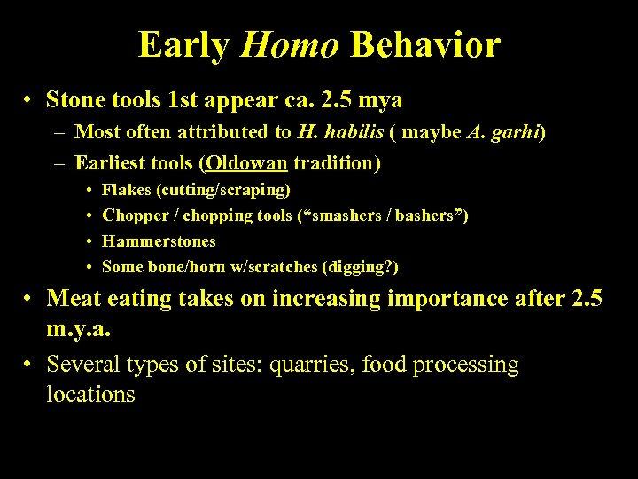 Early Homo Behavior • Stone tools 1 st appear ca. 2. 5 mya –