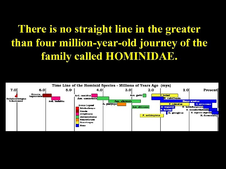 There is no straight line in the greater than four million-year-old journey of the