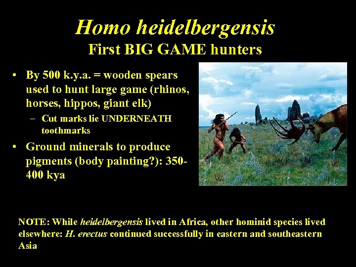 Homo heidelbergensis First BIG GAME hunters • By 500 k. y. a. = wooden