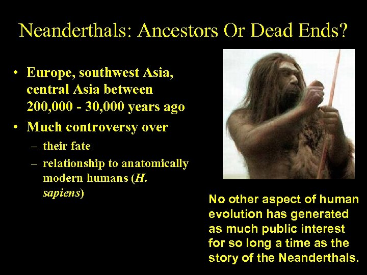 Neanderthals: Ancestors Or Dead Ends? • Europe, southwest Asia, central Asia between 200, 000