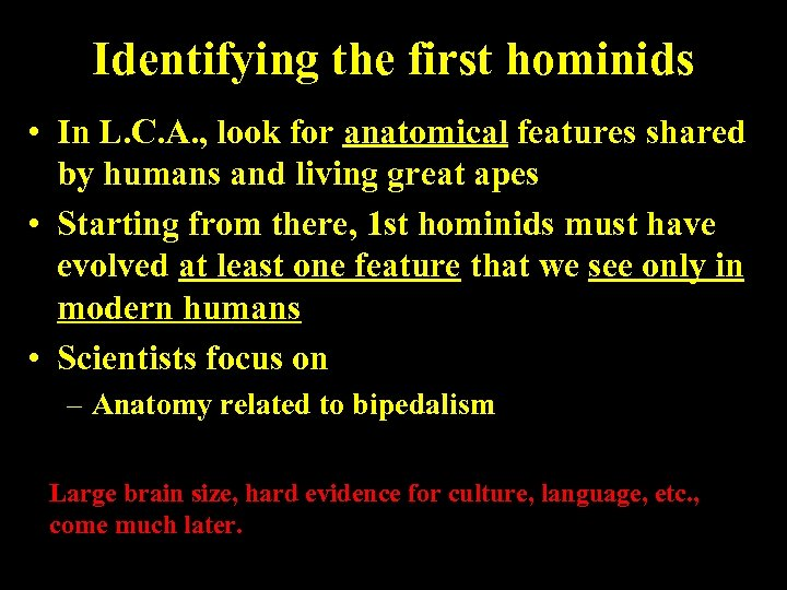 Identifying the first hominids • In L. C. A. , look for anatomical features