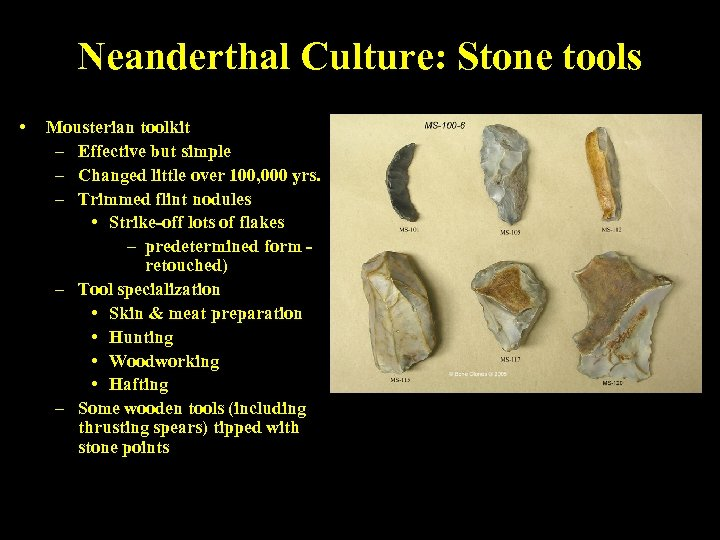 Neanderthal Culture: Stone tools • Mousterian toolkit – Effective but simple – Changed little