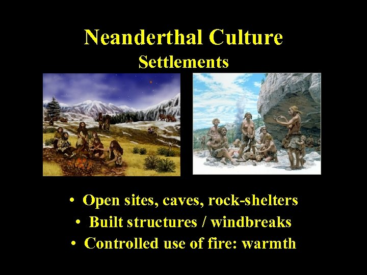 Neanderthal Culture Settlements • Open sites, caves, rock-shelters • Built structures / windbreaks •