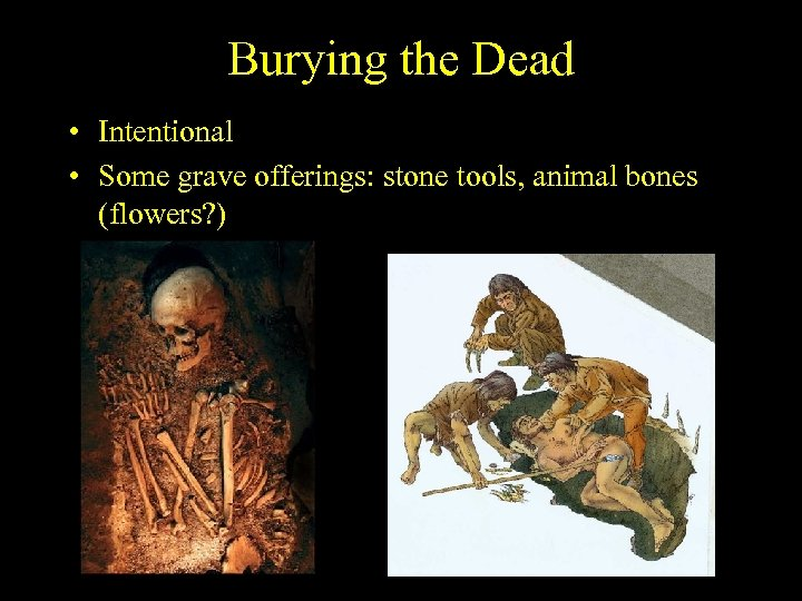 Burying the Dead • Intentional • Some grave offerings: stone tools, animal bones (flowers?