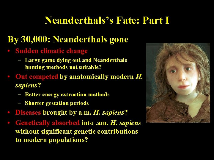 Neanderthals's Fate: Part I By 30, 000: Neanderthals gone • Sudden climatic change –