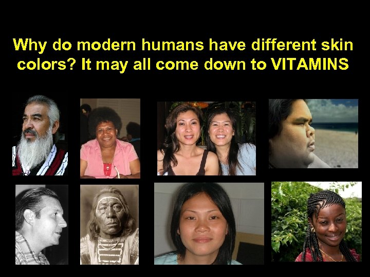 Why do modern humans have different skin colors? It may all come down to