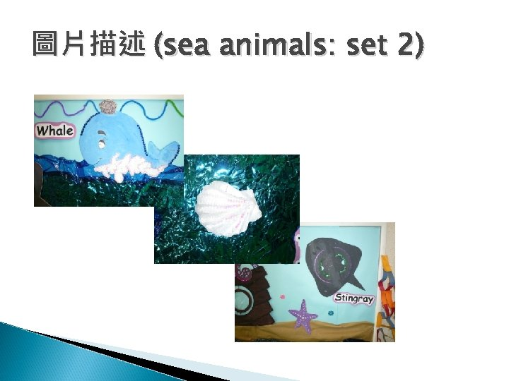 圖片描述 (sea animals: set 2)