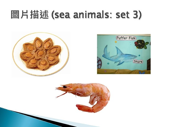 圖片描述 (sea animals: set 3)
