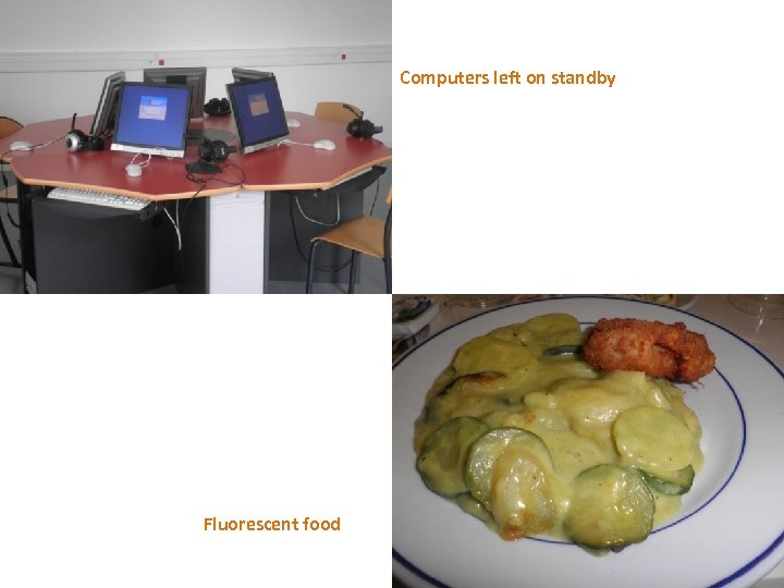 Computers left on standby Fluorescent food