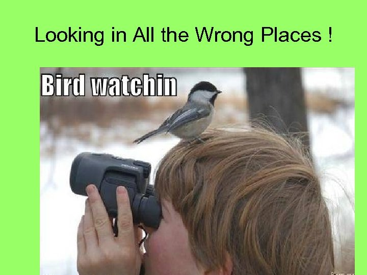 Looking in All the Wrong Places !