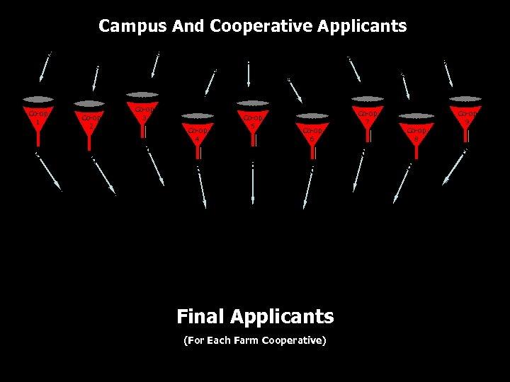 Campus And Cooperative Applicants Co-op 1 Co-op 2 Co-op 3 Co-op 4 Co-op 5