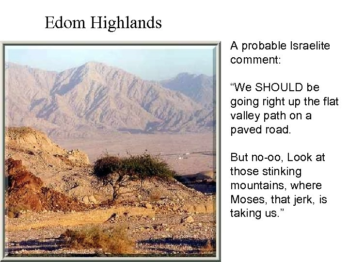 """Edom Highlands A probable Israelite comment: """"We SHOULD be going right up the flat"""