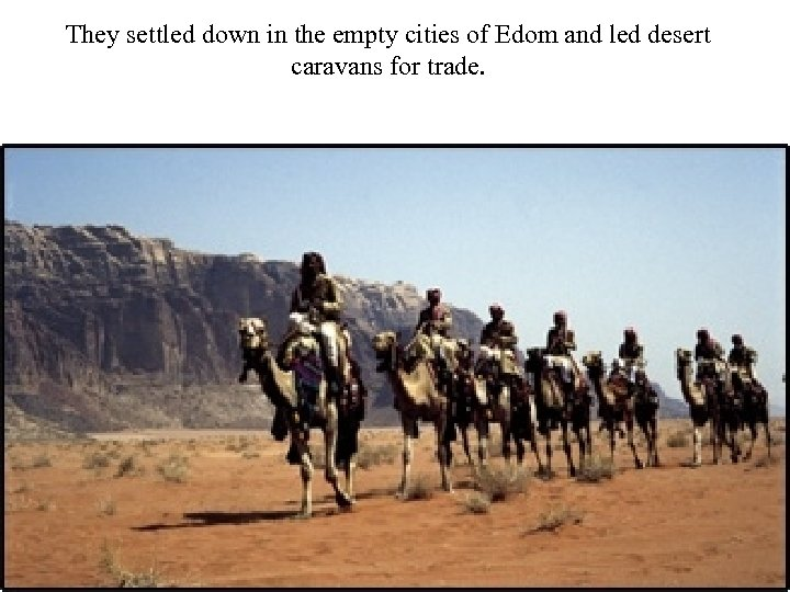They settled down in the empty cities of Edom and led desert caravans for