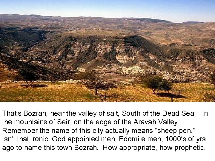 Bozrah That's Bozrah, near the valley of salt, South of the Dead Sea. In
