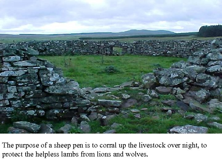 Sheep pen = Bozrah The purpose of a sheep pen is to corral up