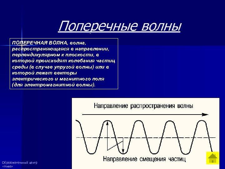 Поперечные волны ПОПЕРЕЧНАЯ ВОЛНА, волна, распространяющаяся в направлении, перпендикулярном к плоскости, в которой происходят