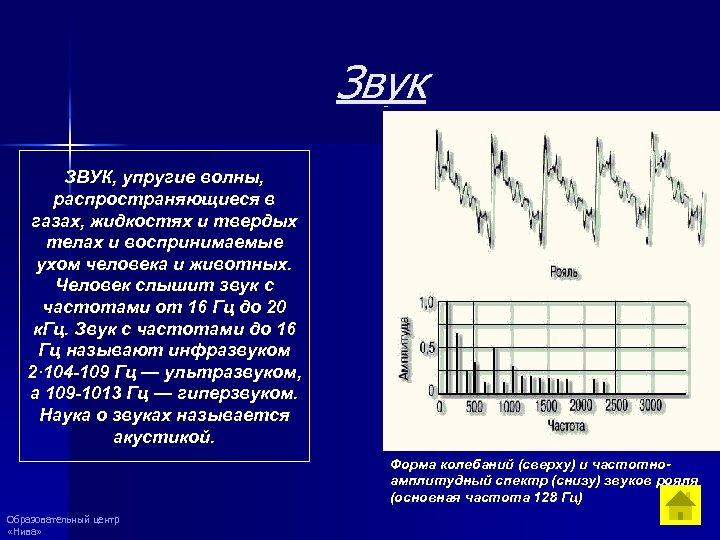 Звук ЗВУК, упругие волны, распространяющиеся в газах, жидкостях и твердых телах и воспринимаемые ухом