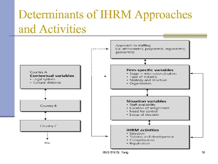 Determinants of IHRM Approaches and Activities IBUS 618 Dr. Yang 18