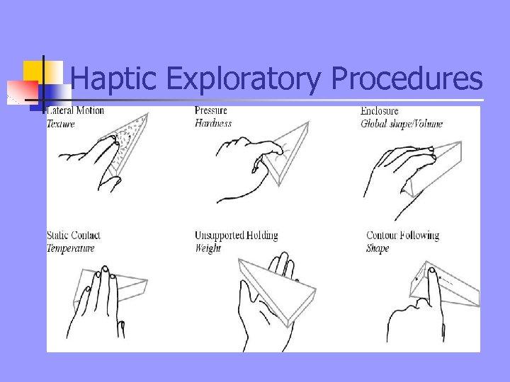 Haptic Exploratory Procedures