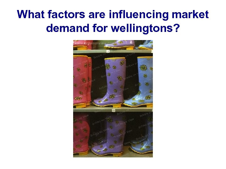 What factors are influencing market demand for wellingtons?