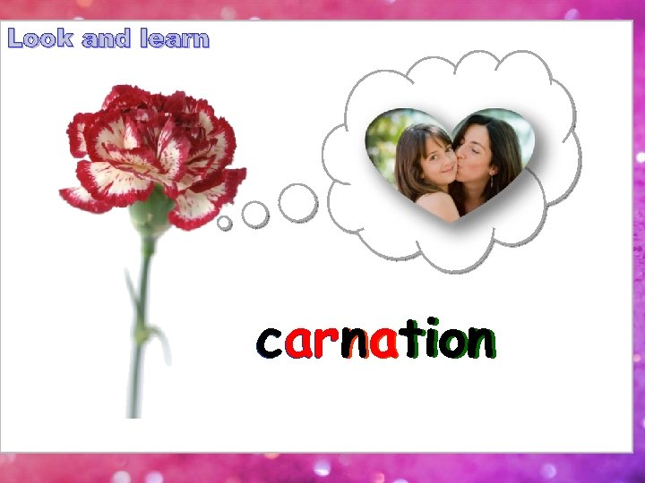 Look and learn carnation