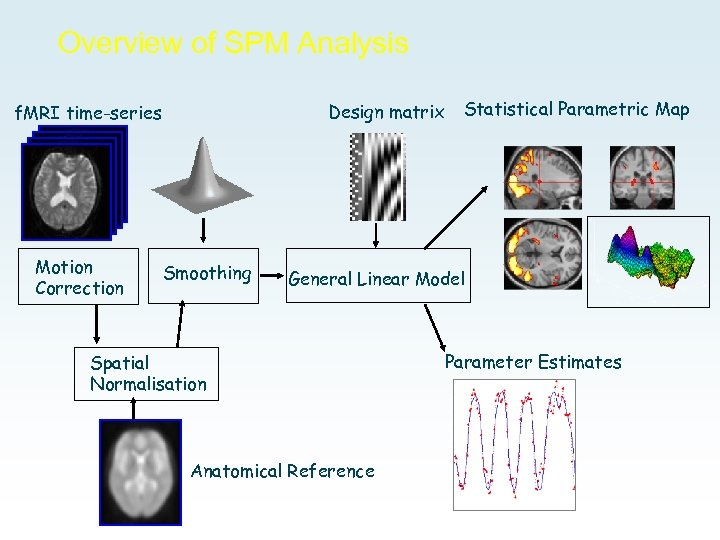 Overview of SPM Analysis Design matrix f. MRI time-series Motion Correction Smoothing Statistical Parametric