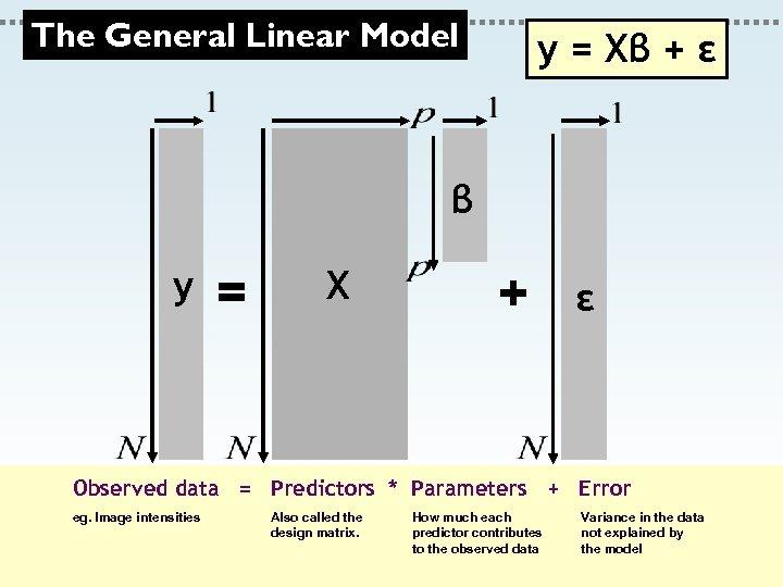 The General Linear Model y = Xβ + ε β y = X +
