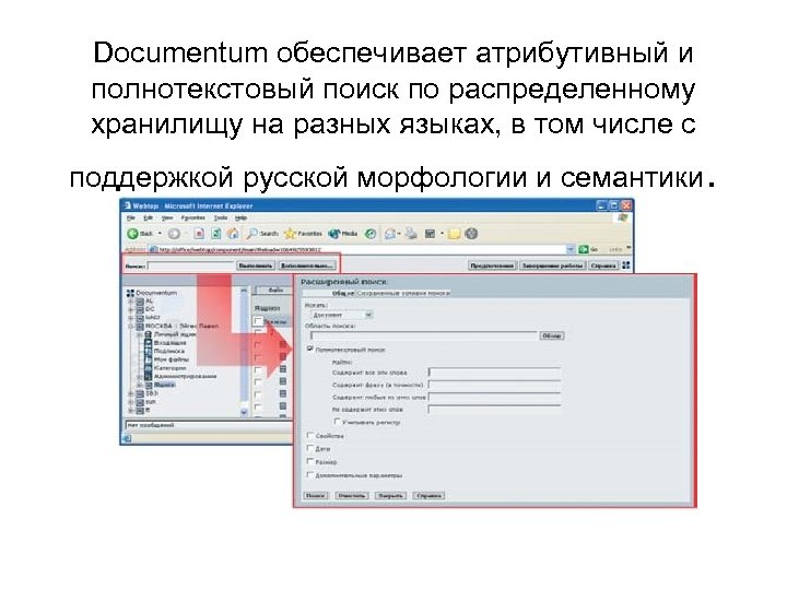 Documentum обеспечивает атрибутивный и полнотекстовый поиск по распределенному хранилищу на разных языках, в том