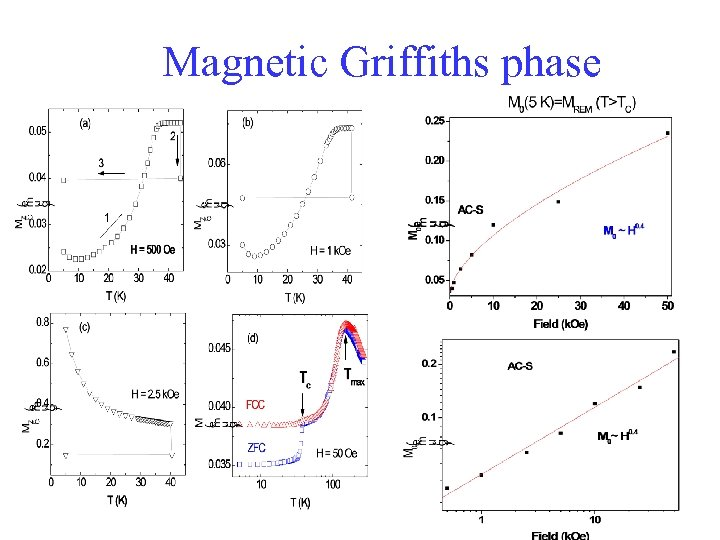 Magnetic Griffiths phase