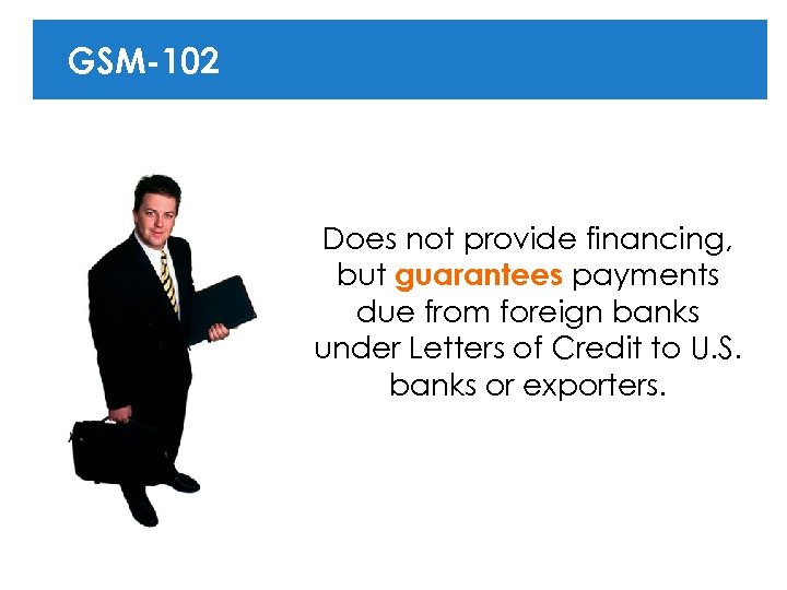 GSM-102 Does not provide financing, but guarantees payments due from foreign banks under Letters