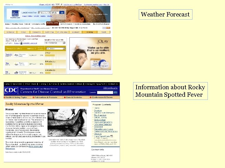 Weather Forecast Information about Rocky Mountain Spotted Fever