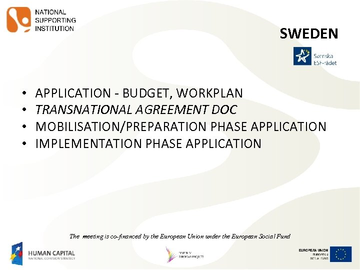 SWEDEN • • APPLICATION - BUDGET, WORKPLAN TRANSNATIONAL AGREEMENT DOC MOBILISATION/PREPARATION PHASE APPLICATION IMPLEMENTATION
