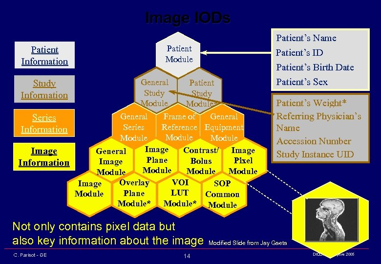 Image IODs Patient Information Patient's Name Patient's ID Patient's Birth Date Patient Module General
