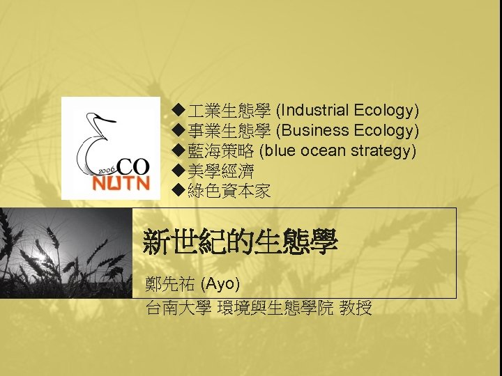 u 業生態學 (Industrial Ecology) u事業生態學 (Business Ecology) u藍海策略 (blue ocean strategy) u美學經濟 u綠色資本家 新世紀的生態學